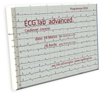 ECG lab advanced