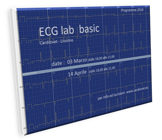 ECG lab basic