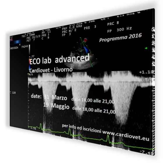 ECO lab advanced